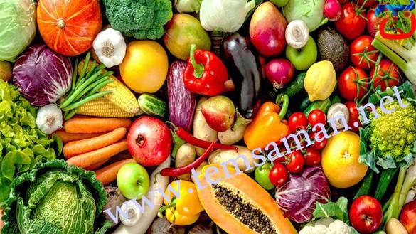 طرق ذكية لحفظ الأطعمة